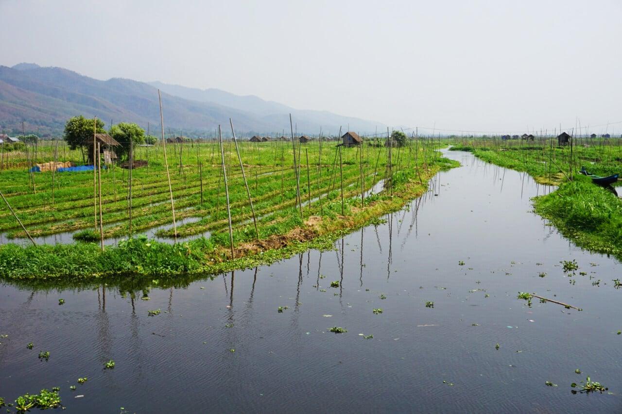 Myanmar photos farms on Lake Inle Burma