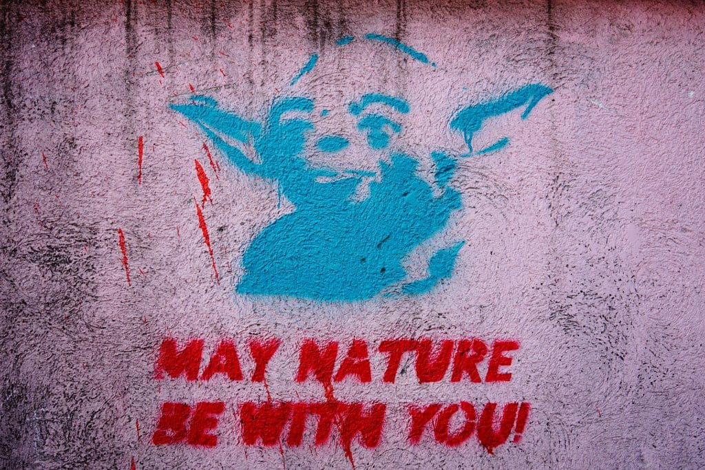 Belgrade Street Art: Yoda May Nature Be With You