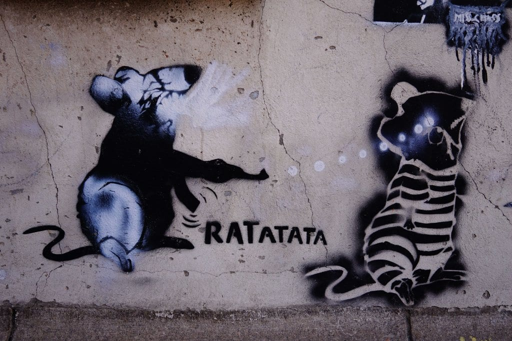 Belgrade Street Art: Rat
