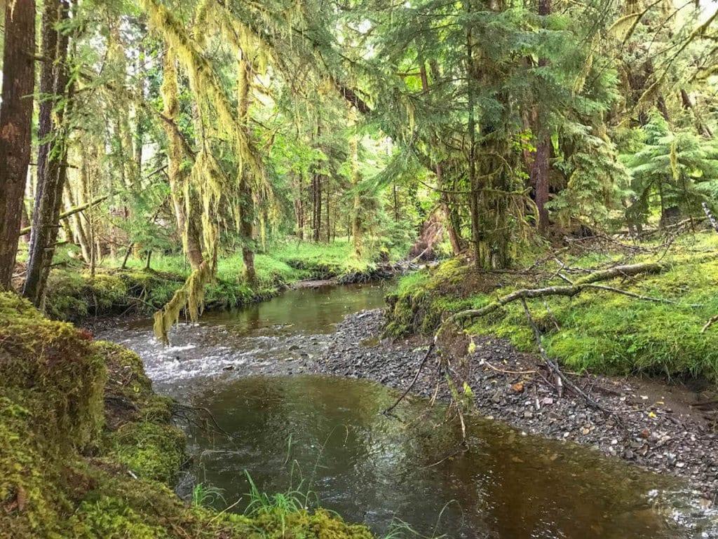 Destinations in North America : Haida Gwaii