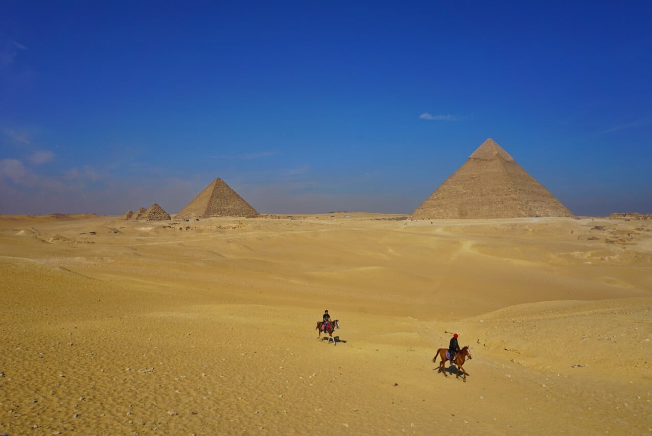Horses in front of the Pyramids at Giza