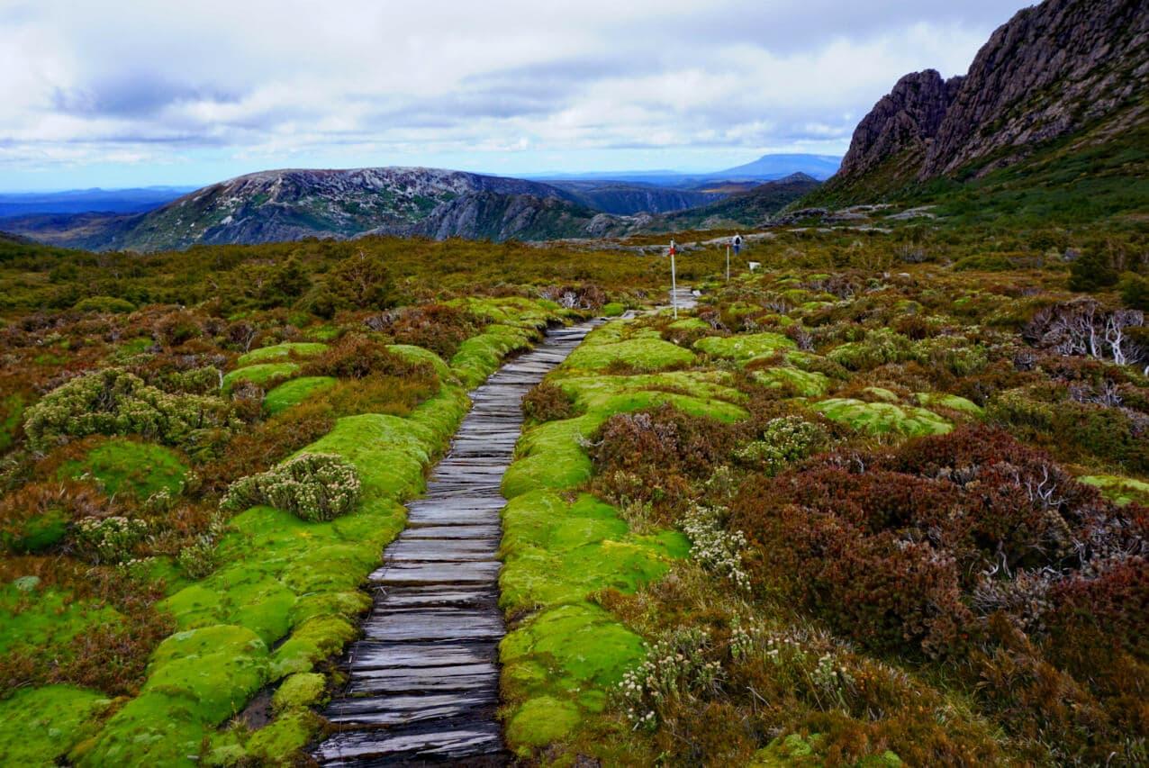 A hiking path near Cradle Mountain, Tasmania