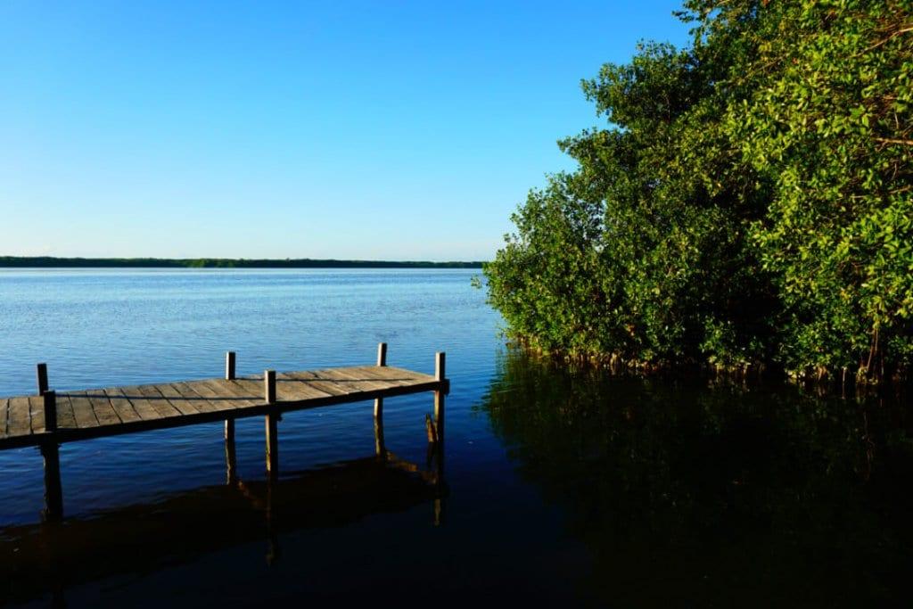 A dock in the Ria Celestun