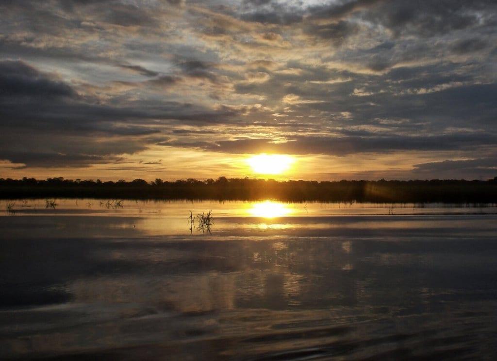 Selva Amazon Basin Bolivia