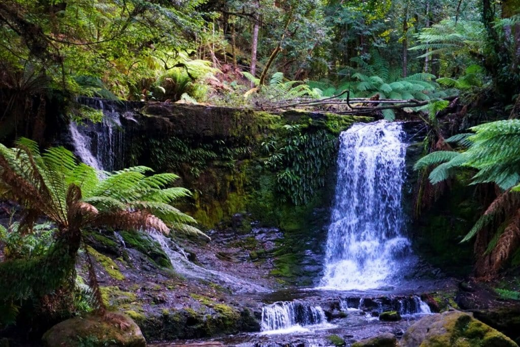 Tasmania Road Trip: A waterfall in Mt Fields National Park, Tasmania