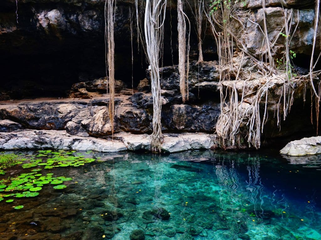 A travel tip for Mexico: don't miss the cenotes like this!