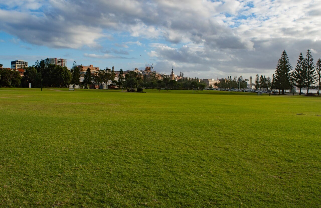 Green grass at Newcastle's Foreshore Park, a Top Place to Visit in Newcastle