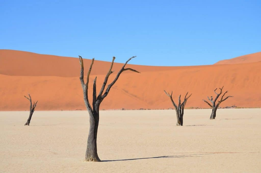 Visiting the Sossusvlei is a Top Things to do in Swakopmund