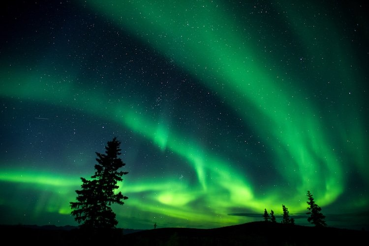 The northern lights dance green and yellow in the sky above Dawson City, Yukon