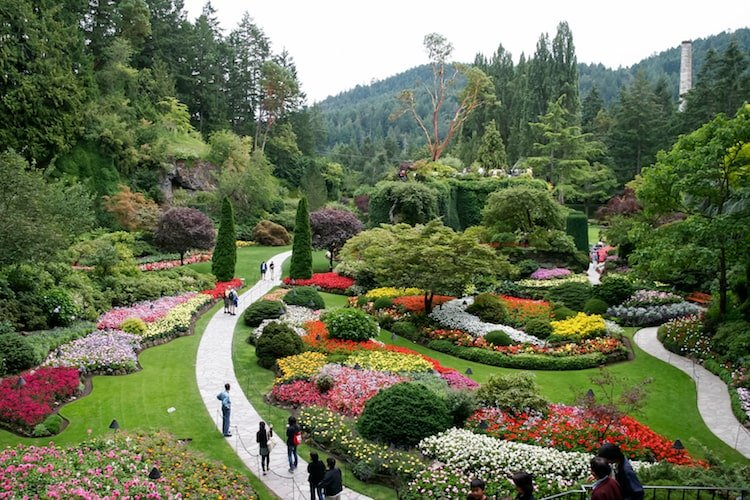 People walk among the flowers and greenery in Butchart Gardens in Victoria, British Columbia