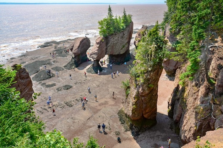 Rocks tower ouf of sand with trees growing on top and people walking around in the Maritimes, Canada