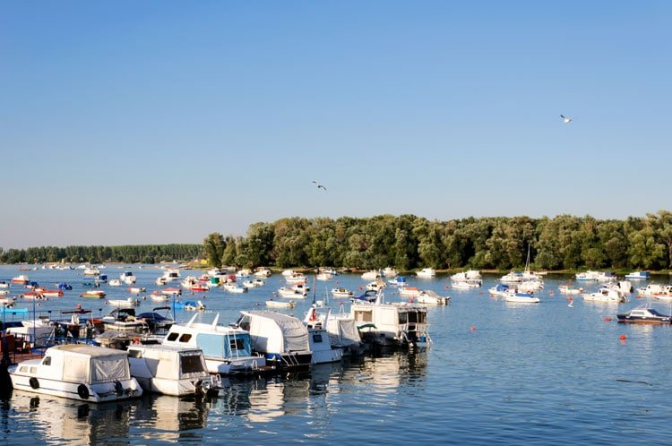 White boats on a river in Zemun Serbia