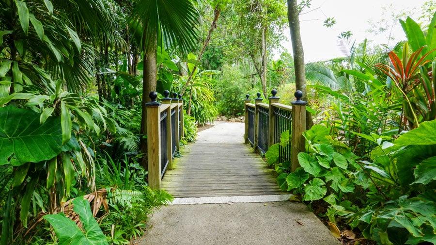 View of a botanical garden and a short bridge