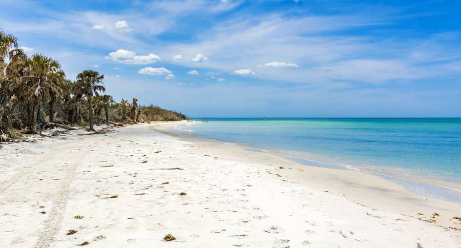 View of the empty Caladesi Island State Park