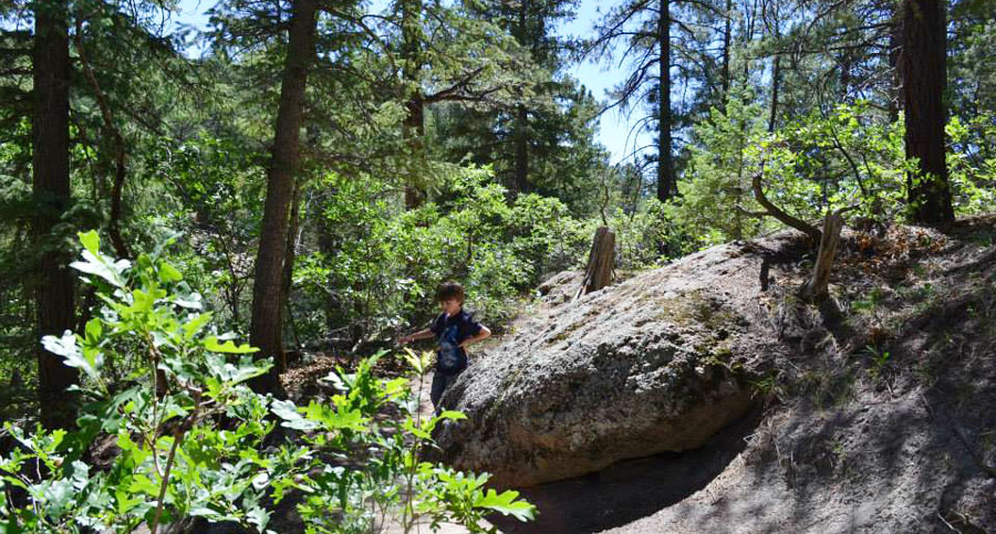 View of the author's son in the middle of Castlewood Canyon State Park