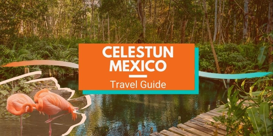 Celestun Mexico Travel Guide