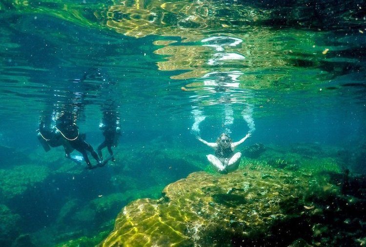 An underwater shot of Taylor and three scuba divers at Jardin del Eden cenote in Quintana Roo, Mexico