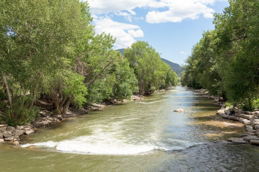 View of the Arkansas River between trees in Colorado