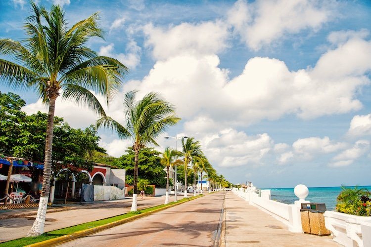 street road or car track with promenade or waterfront near water, green palm trees sunny outdoor in summer Cozumel, Mexico on cloudy blue sky background. traveling and vacation