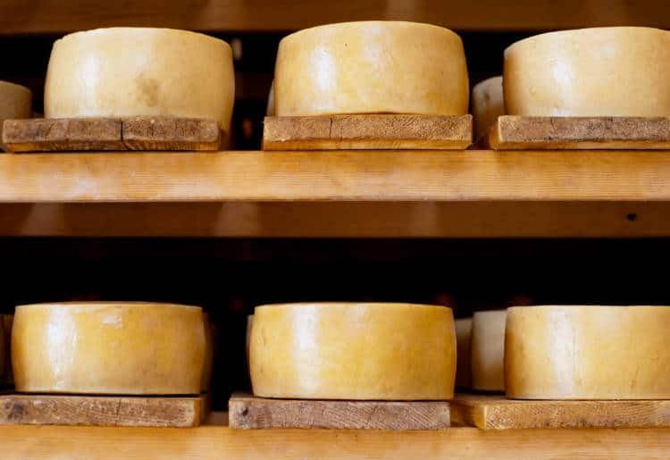 6 slabs of Croatian pag cheese