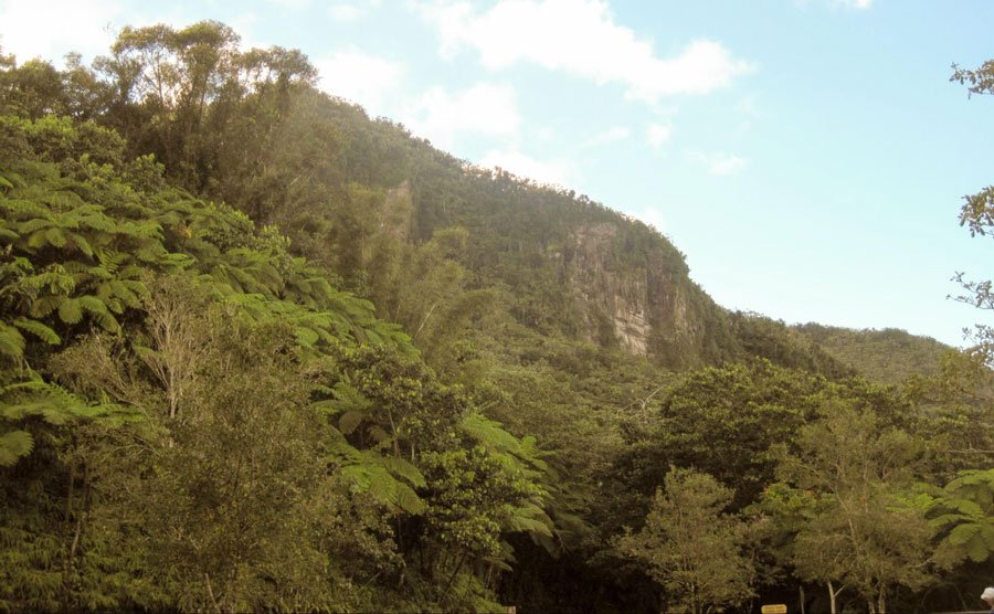 View of El Yunque National Rainforest in Puerto Rico