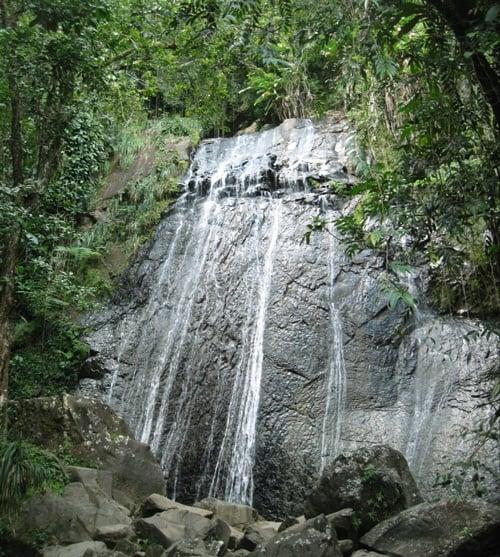 View of La Coca Waterfalls in El Yunque