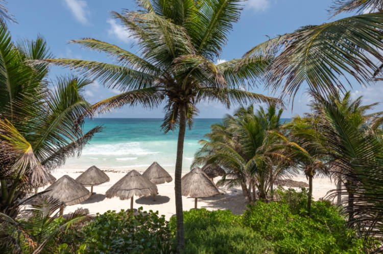 View of palm fronds and white sand beach at Encantada luxury hotel in Tulum