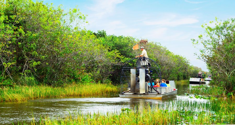 View of tourists riding an airboat in Everglades