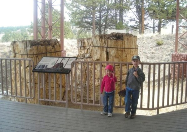 View of author's children at an exhibition at Florissant Fossil Beds National Monument