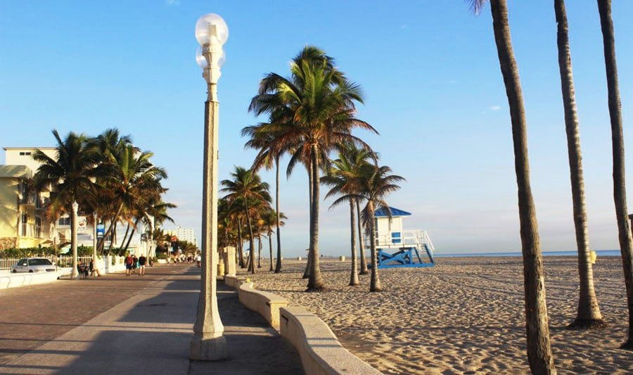 View of the Hollywood Boardwalk and the beach with a line of palm trees