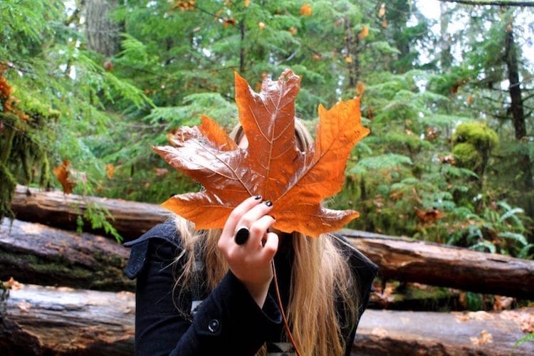 Taylor in Cathedral Grove, British Columbia holding a giant maple leaf in front of her face