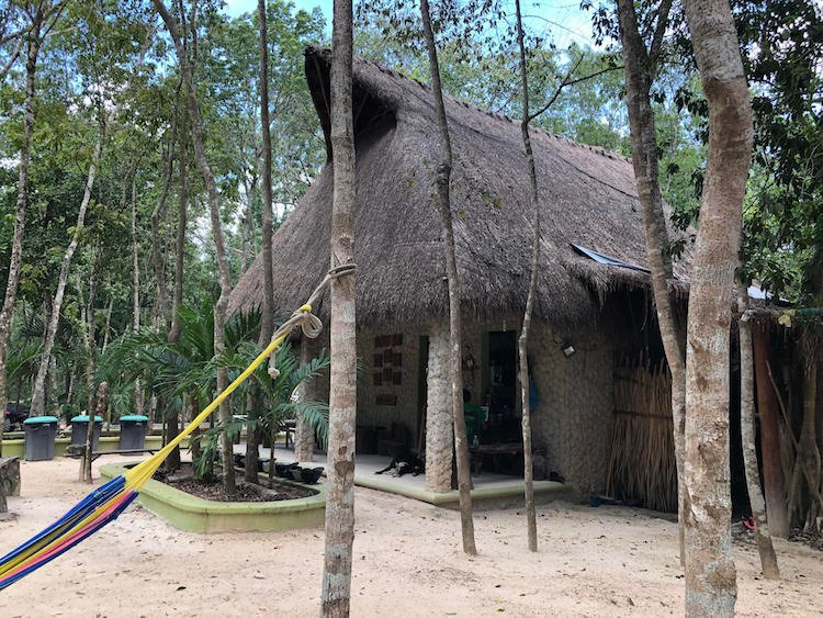A straw hut in the middle of the jungle with a colorful hammock out front