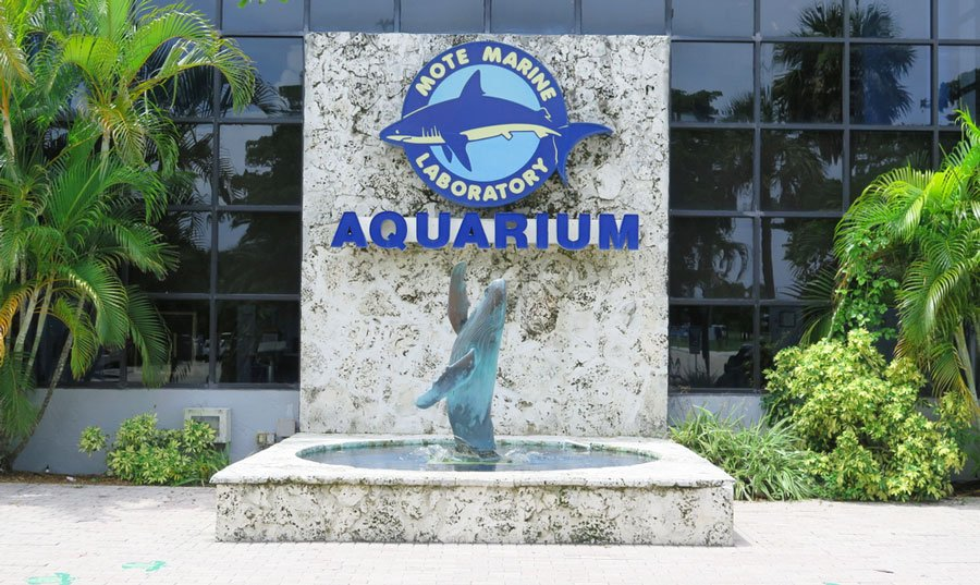 View of the MOTE Marine Laboratory & Aquarium sign at the entrance