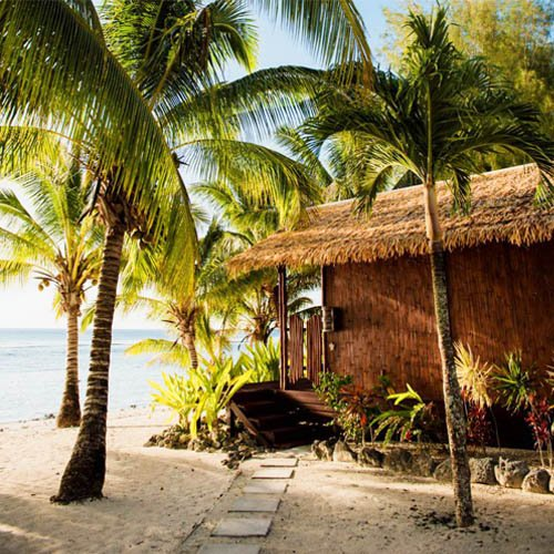Magic reef bungalows in Cook Islands at a beach surrounded by palm trees