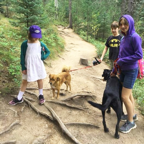 View of the author's kids with their two dogs in Maxwell Falls Trail