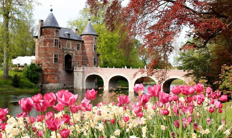 View of the Groot-Bijgaarden Castle and some colorful flowers