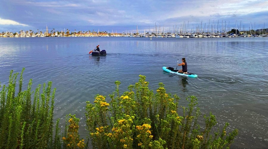 View of people enjoying paddle boarding in Mission Bay