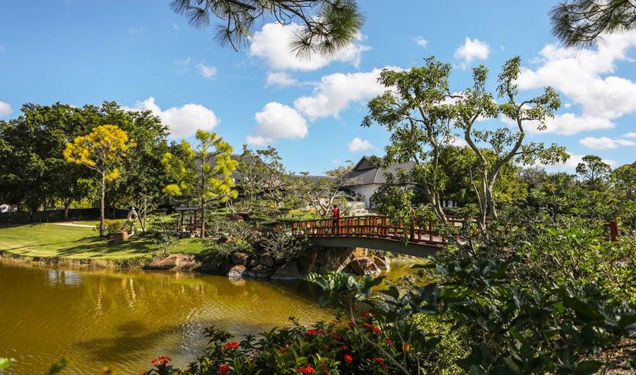 View of a lake in Morikami Garden and a bridge