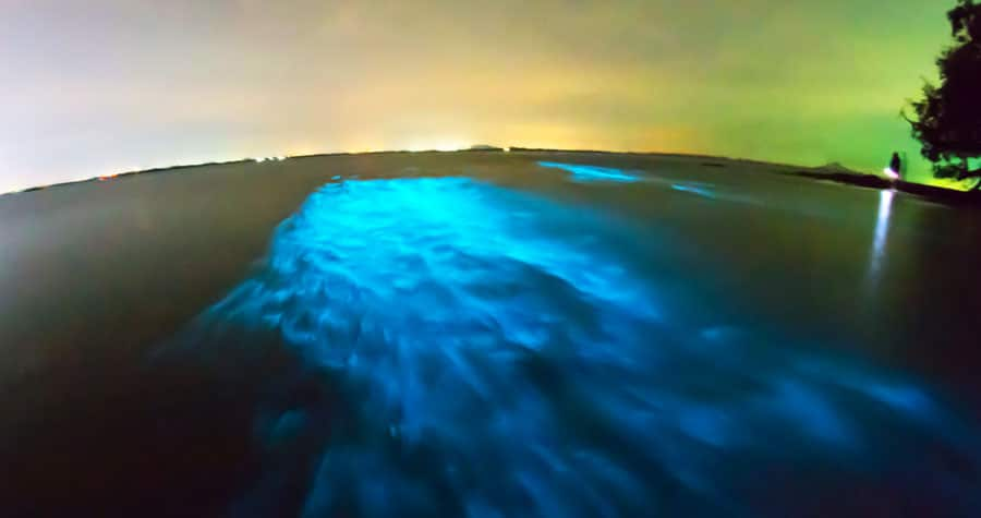 View of the glowing Mosquito Bay in Vieques
