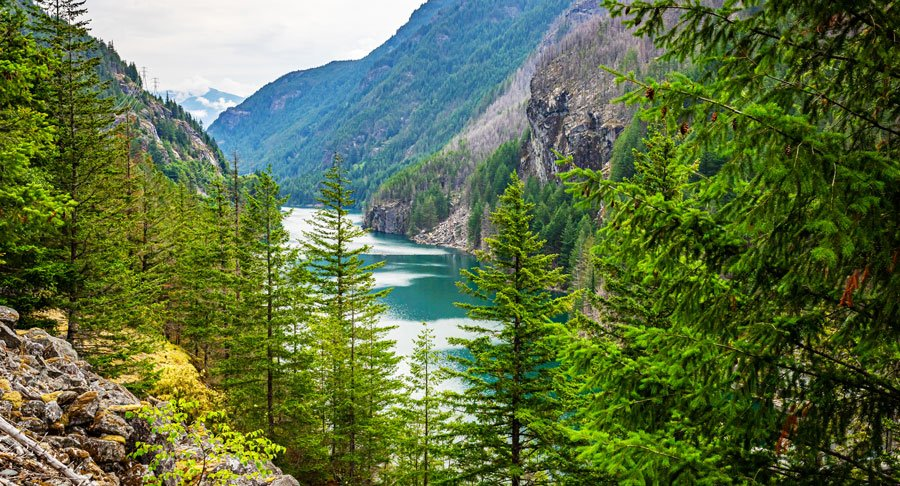 View of the North Cascades mountain range in the wilderness