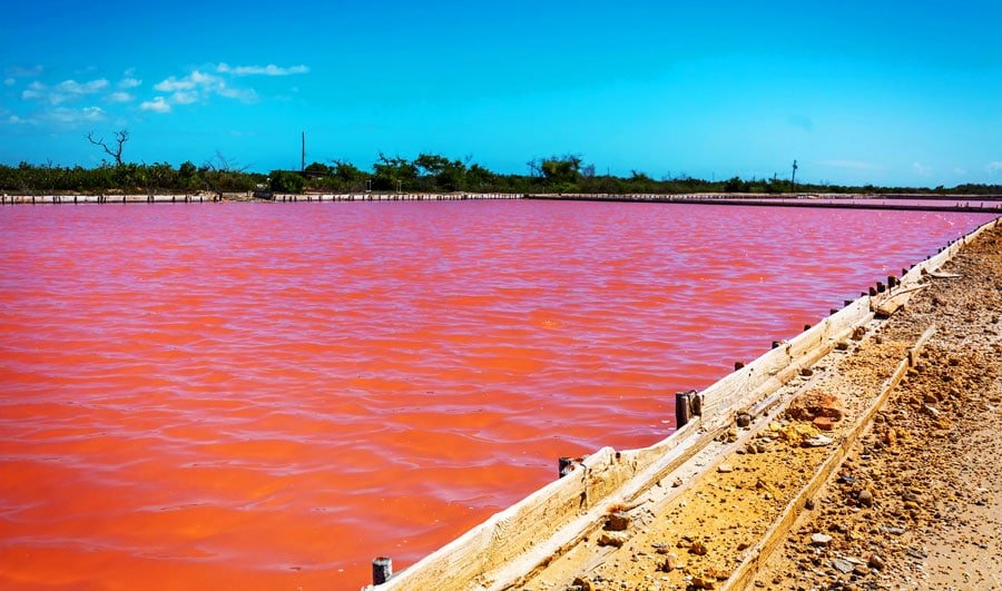 View of the Pink Salt Lake in Cabo Rojo