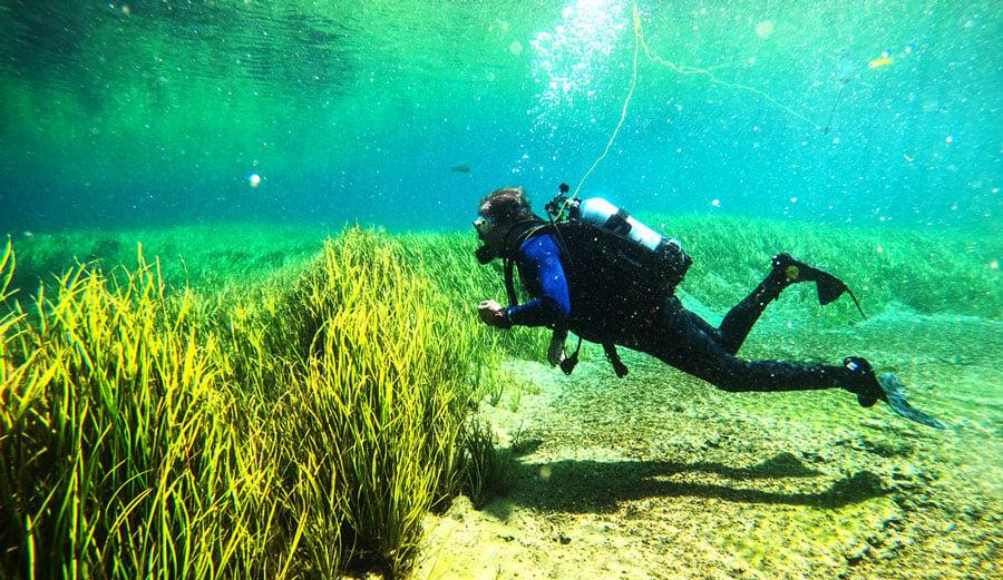 A scuba diver under the Rainbow River