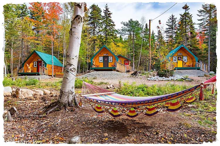 River Nest Cabins at Cabot Trail with hammock