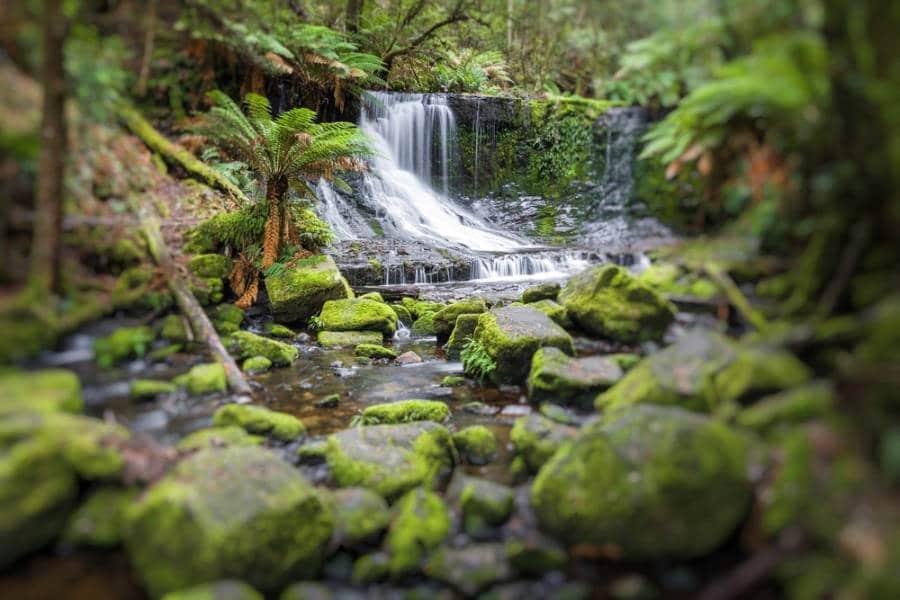 Russell Falls, a stop on a Tasmania Road Trip
