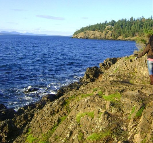 View of the Friday Harbor in San Juan Island