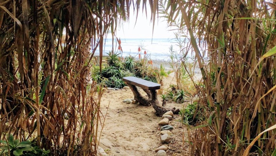 View of the secret spot with a seat on it in San Onofre State Beach
