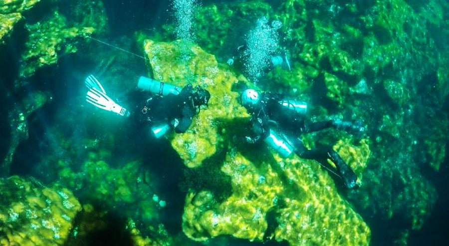 View of two scuba divers under the sea