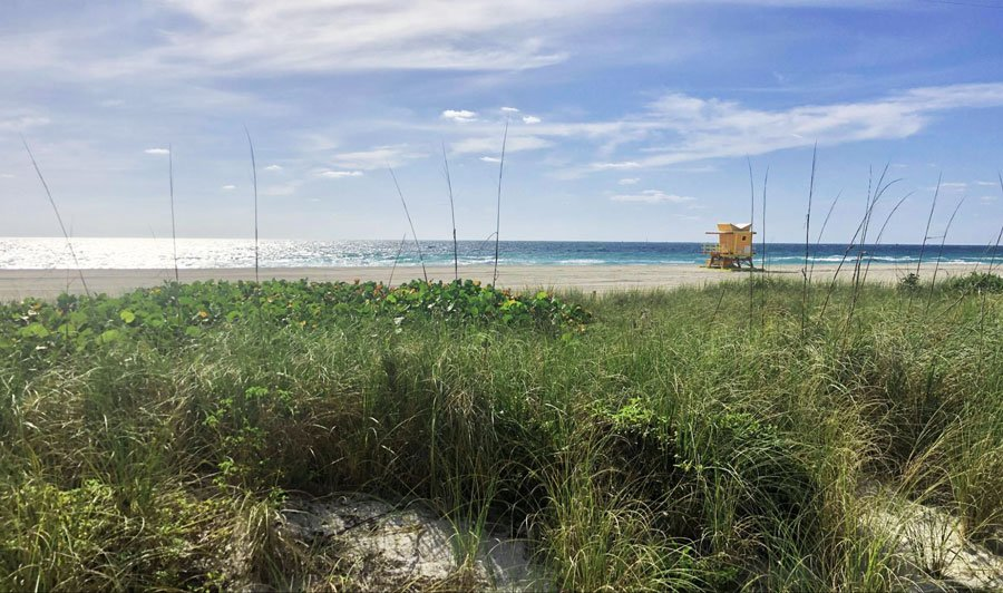 View of the empty South Beach and a small lifeguard house