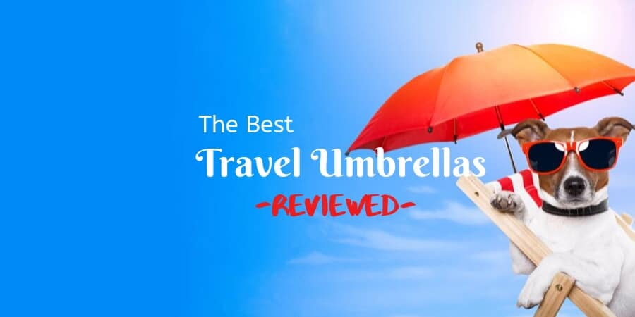 The Best Travel Umbrella Reviews