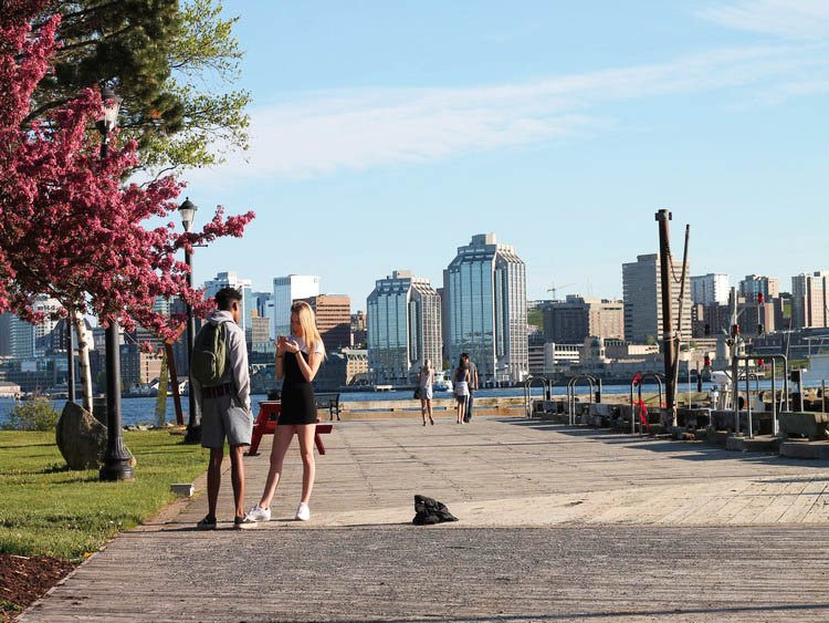 couple standing a the Alderney Landing waterfront in Dartmouth with modern buildings of Halifax in background
